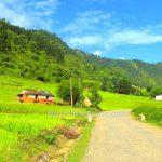 Delhi to Nepal road