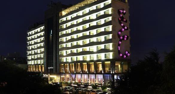 The fern, Ahmedabad